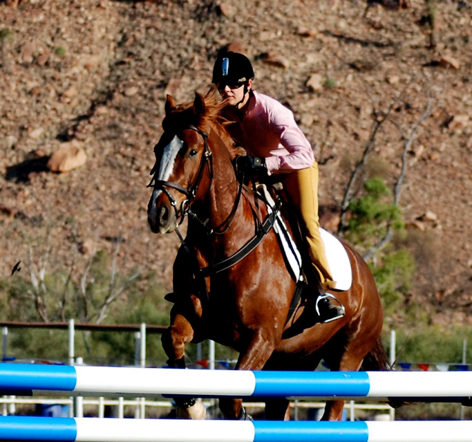 Woman riding a brown horse jumping over fences.